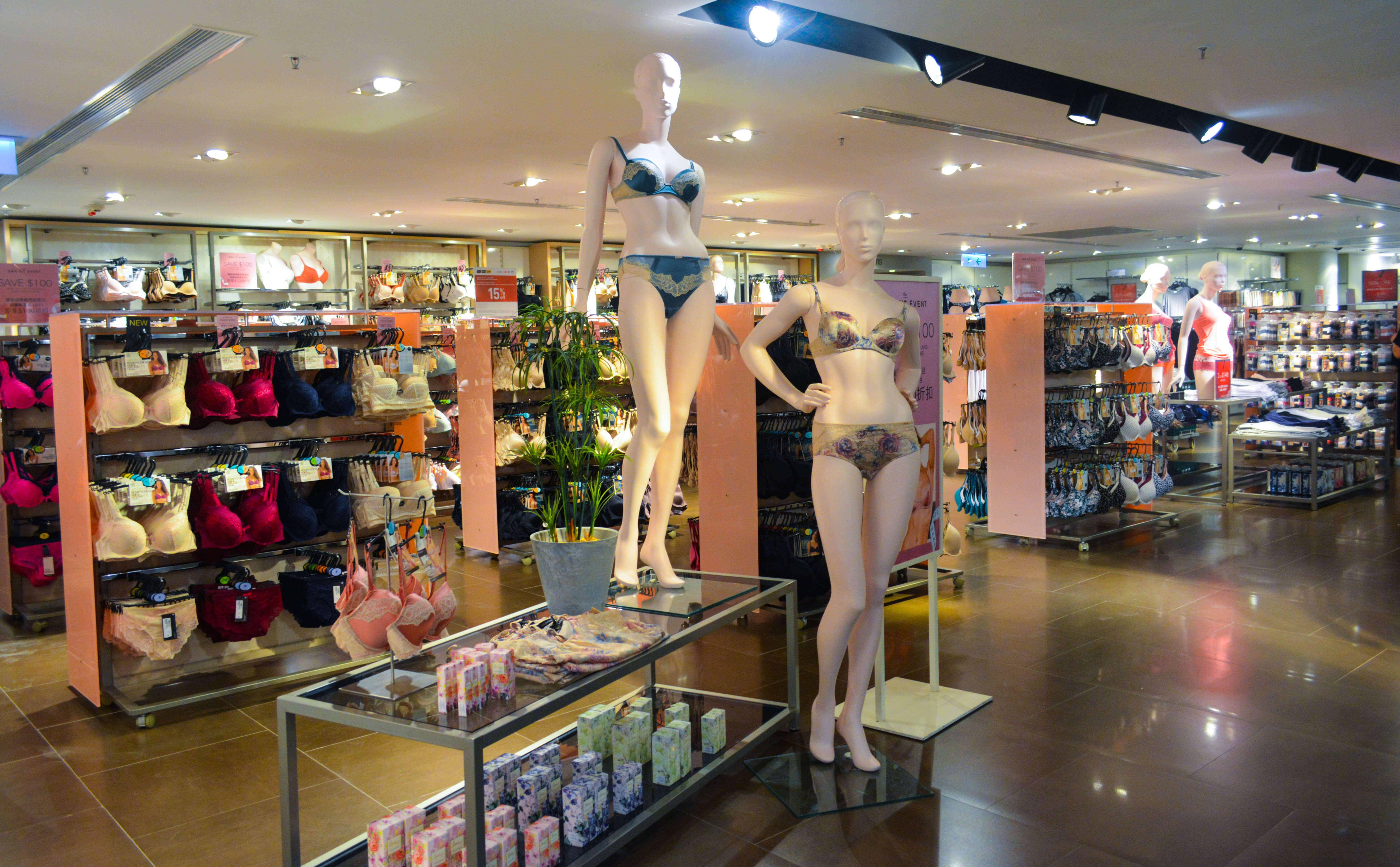 Bras are deemed to be the necessity of women. Their function defy the pull of gravity